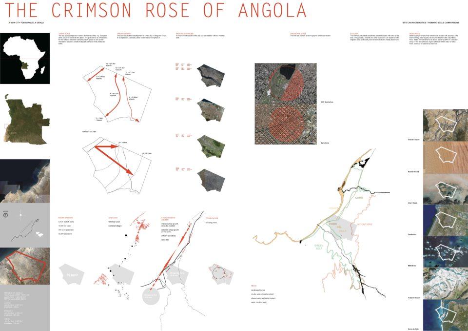 mazzapokora: Crimson Rose Benguela
